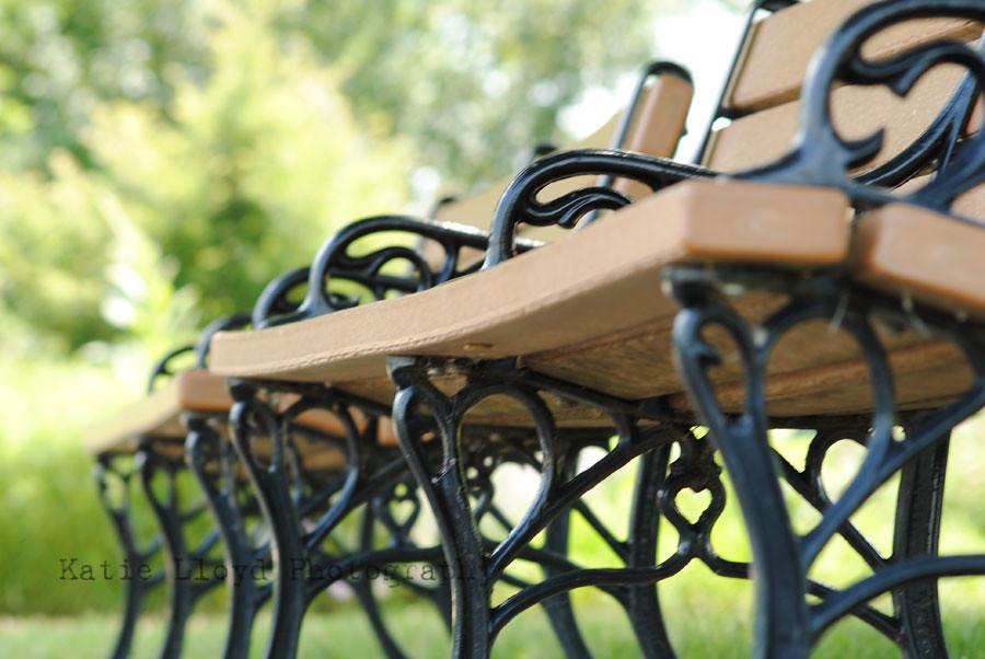 2011-06-13_Arboretum_0279