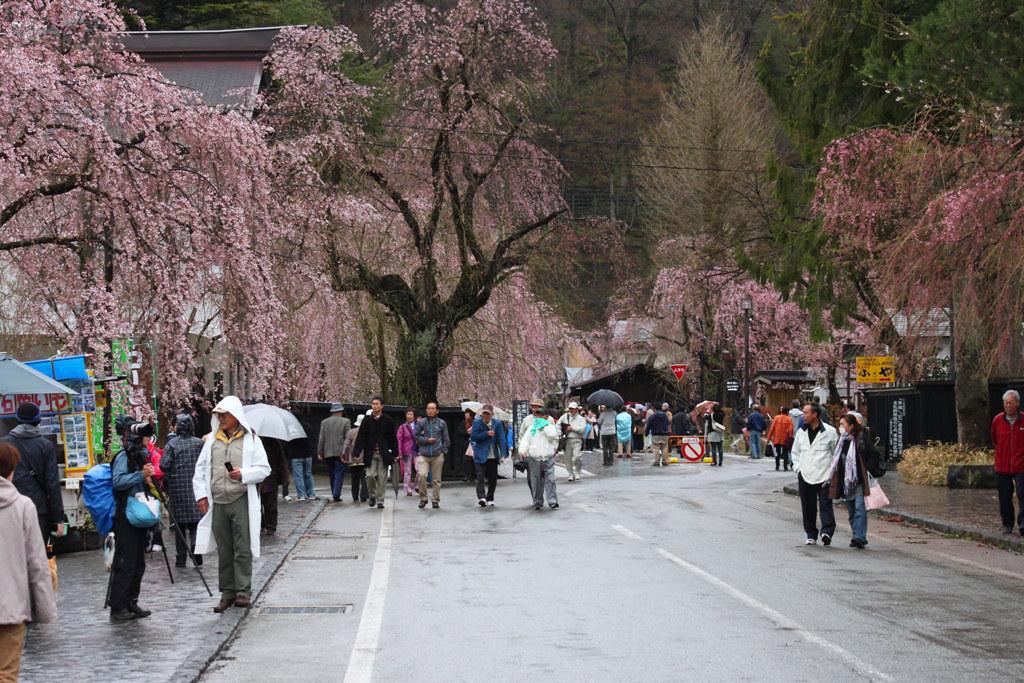 Tohoku Trip 1st day in Akita prefecture, Kakunodate (18)