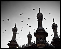 fly away..to the glorious skies (explored) (PNike (Prashanth Naik)) Tags: sky bw india building birds sepia architecture freedom fly flying interestingness interesting ancient nikon asia pigeon prayer flight explore hyderabad andhra masjid andhrapradesh meccah explored d3000 pnike