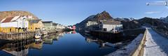 Nobody is here in Nyksund? (dieLeuchtturms) Tags: wallpaper panorama norway norge europa europe norwegen waterreflection atlantik vesterålen waterreflections nordland nyksund wasserspiegelung 3x1 langøya norwegiansea norwegischesee