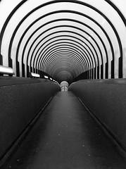 Darlington Bank Top Station. (alanpeacock2) Tags: bridge blackandwhite monochrome vanishingpoint footbridge infinity curves perspective railway tunnel arches walkway darlington photostream railwaybridge tunnelvision scarybridge linesandcurves creepybridge