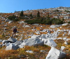 At 2150m on Sept 30 (jjdorsey57) Tags: bc jjdorsey57 bigwhite