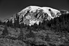 Autumn in Paradise (Black & White, Mount Rainier National Park) (thor_mark ) Tags: 14158feet 4315meters alpinemeadow blackwhite blueskies capturenx2edited cascaderange colorefexpro colors columbiacrest day4 evergreentrees evergreens forest gibraltarrock glacier glaciers hikingupthesideofmountrainier hillside hillsideoftrees lookingnnw mountrainier mountrainierarea mountrainiermassif mountrainiernationalpark mountains mountainsindistance mountainsoffindistance multiplecolors multitudeofplantleafcolors nature nikond800e nisquallyglacier pacificranges pointsuccess portfolio project365 silverefexpro2 skylinetrail smalltrees snowcapped southwashingtoncascades stratovolcano trailsaroundparadiseinn trees triptomountrainierandcolumbiarivergorge wa unitedstates