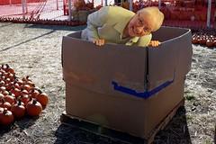 "It's a ""Granny In The Box"" (SolanoSnapper) Tags: granny grannysadventures wah werehere hereios peopleinabox box cardboardbox"