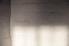 4Y4A3488 (francois f swanepoel) Tags: anotherbrickinthewall baksteen baksteenmuur beton brick concrete invalshoek laehoek lowangle muur paint shadow shisa skadu skaduspel son sun teksture textures verf wall white