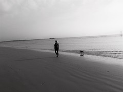 looking for yourself (vfrgk) Tags: woman dog dogandmaster loyaldog strolling walking seaview sea seascape seaside seashore lines moody depressing desolation desolate water waterscape ship horizon shadow reflections lowtide bw blackandwhite monochrome cloudy cloudysky dismal landscape shore coast