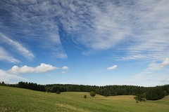 Rêverie * (Titole) Tags: lanscape sky clouds firtrees rural titole nicolefaton