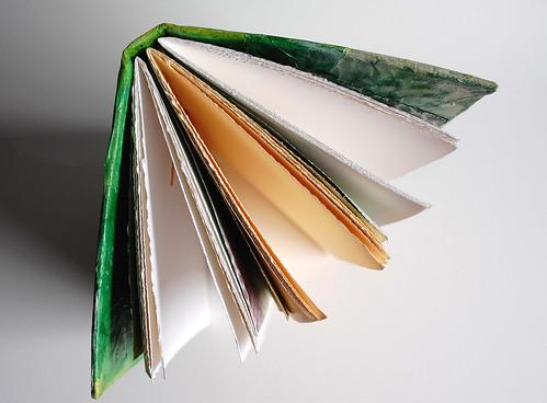 Green Book 10