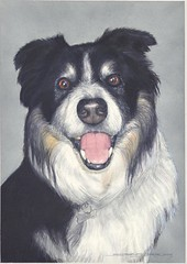 """Watercolour  Dog Painting • <a style=""""font-size:0.8em;"""" href=""""http://www.flickr.com/photos/64357681@N04/5867073514/"""" target=""""_blank"""">View on Flickr</a>"""