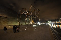 Bilbao - Guggenheim by night. (the.flea) Tags: art night geotagged noche dc spain raw sigma bilbao guggenheim flea maman 1020 nuit louisebourgeois bilbo paisvasco guggenheimmuseum theflea sigma1020 f456 1020mmf456exdc geo:lat=43269168 geo:lon=2932918
