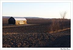 Champ en dormance/Dormant Field  in Quebec (Pentax_clic) Tags: morning landscape spring pentax quebec paysage printemps matin dormant kx harwood vaudreuil dormance