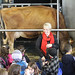 Happy kids learn about dairy cows
