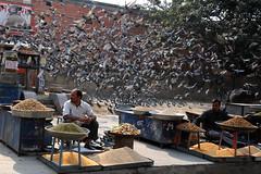 Jaipur (kattyen) Tags: digital nikon indie jaipur d300s