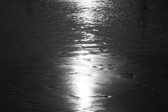 Sol reflejado en la orilla en Bn
