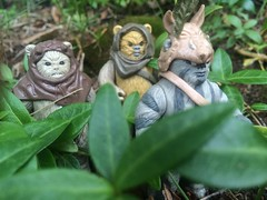 Better late than never! For Ewok Week! (chevy2who) Tags: toy star action ewok return figure jedi week kenner wars endor