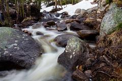Glacier Creek in Spring (Matt Thalman - Valley Man Photography) Tags: morning trees water forest nationalpark colorado unitedstates cascades rmnp rockymountainnationalpark glaciercreek albertafalls