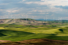 Steptoe Butte Wind Turbines (EdBob) Tags: statepark travel sky green nature clouds rural landscape spring energy butte shadows view natural wind scenic windy windmills hills generators electricity overlook viewpoint generation turning wasington turbines palouse greenenergy easternwashington steptoe steptoebutte allmyphotographsarecopyrightedandallrightsreservednoneofthesephotosmaybereproducedandorusedinanyformofpublicationprintortheinternetwithoutmywrittenpermission edmundlowephotography 2014