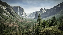 Yosemite (Channed) Tags: america amerika california californi noordamerika tunnelview us usa unitedstates unitedstatesofamerica vs verenigdestaten yosemite yosemitenp yosemitenationalpark