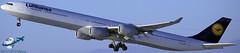 Lufthansa A340-642 [D-AIHT] (aircraftvideos) Tags: avgeek aircraft airbus airplane airport aviation airliner avhooker a319 a340 a380 a320 a321 a318 a330 a300 a388 a332 a333 aerial lax klax cargo california boeing 767 777 747 744 787 757 727 707 789 737 788 77e 77l 77w 772 773 738 748 763 762 74f 734 764 77f 733 722 748i 721 losangelesinternationalairport angels angeles traffic