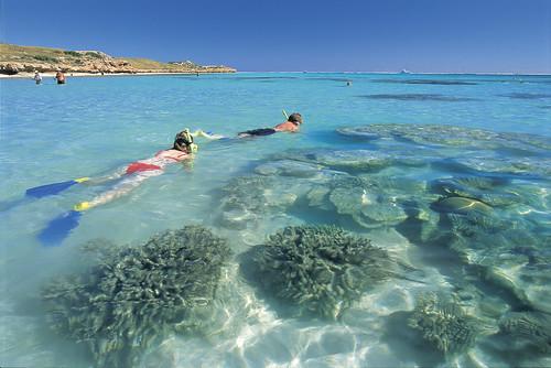 000225-787 - Ningaloo Reef snorkelling(Coral Coast).jpg