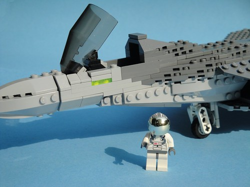 A pilot's dream