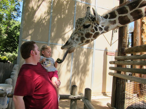 Zoo 6-28-11