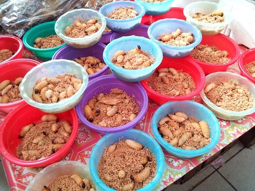 Sibu, sarawak - live sago worms.59