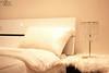 my new room (Tariq AL-oraini) Tags: cats cat canon nikon portait 1855 moonface whitecat 600d 85mm18 قطه قط كانون جميله قطوه قطو بورتريت canon600d تصويراحترافي ض1 كانون600دي قطابيض amaing50mm18 ورتريه