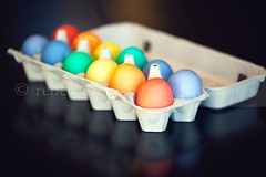 Easter Eggs (Rebecca812) Tags: stilllife holiday black reflection festive easter table rainbow colorful background cardboard eggs carton tradition dyed analagous canon5dmarkii rebecca812