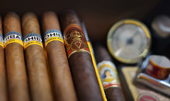 "Humidor • <a style=""font-size:0.8em;"" href=""http://www.flickr.com/photos/69283092@N05/7051082345/"" target=""_blank"">View on Flickr</a>"