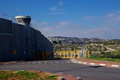The wall between Israel and Palestine (tttske_C) Tags: wall israel palestine 壁 イスラエル パレスチナ