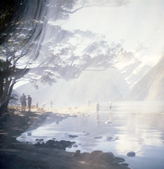 (*YIP*) Tags: newzealand mountain reflection 120 6x6 film nature horizontal mediumformat square landscape outdoors photography nationalpark kodak tranquility unescoworldheritagesite epson milfordsound kiev scenics mitrepeak tranquilscene kiev60 yip fiordlandnationalpark iso160 traveldestinations v500 famousplace mountainpeak southislandnewzealand yipchoonhong