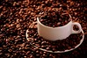 lindo, gostoso e cheiroso. (Bruno Farias) Tags: light brown cup coffee café grain product xícara marrom grão produto iif everrocks obrunofarias institutointernacionaldefotografia brunofariassilva