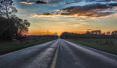 My Neck of the Woods (TuthFaree) Tags: elements rural farm landscape highway asphalt sunset color peanuts ga georgia swga