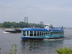 Moby Dick bei Bonn
