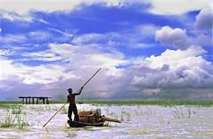 (বিশ্বজিৎ_২১৬) Tags: life sky people clouds river fishermen monsoon bangladesh padma maowa