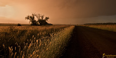 Let Your Life Unravel (southern_skies) Tags: road sunset storm grass plains pepperina biddeston