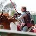 Renaissance Pleasure Faire 2012 053