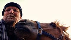 Gewoon pret met Sarah (gill4kleuren - 12 ml views) Tags: life horse me sarah fun outside happy lol running gill saar paard pret haflinger