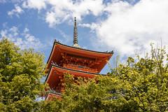 _DSC5958 (banpreso) Tags: sony japan japanese kyoto temple kiyomizudera old buddist tree sky wood structure