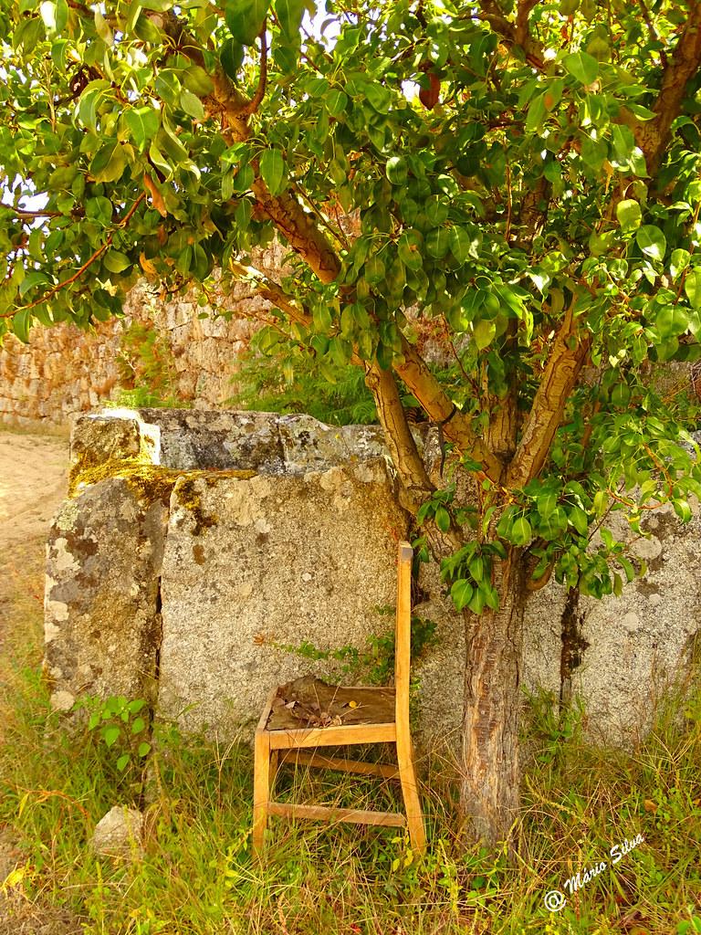 Águas Frias (Chaves) - ... a cadeira que não está na sala ...