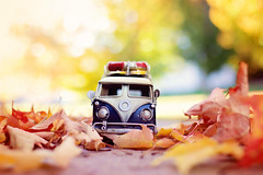 """I'm so glad I live in a world where there are Octobers.""~Anne of green gables~ (Sandra H-K) Tags: miniature miniaturemonday october toyphotography toy toybus car bus vwbus vw vermont vintage outside outdoors ontheground autumn autumnleaves leaves bright bokeh bokehlicious sunny day dof depthoffield daytime warm golden yellow green orange foliage fun colorful nature"
