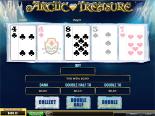 free Arctic Treasure gamble bonus feature