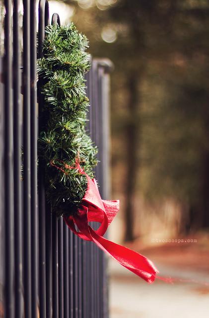 shoulda put a wreath on it 330/365