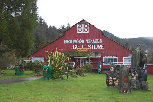 Redwood Trails