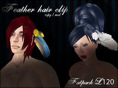 A:S:S - Feather hair clips