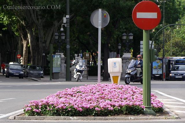 Contra flores