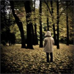 Y ahora aqu... (Pollobarba) Tags: wood autumn boy blur cold girl loss leaves hojas woods rboles loneliness child coat movida outoffocus nia nostalgia bosque destiny desenfoque end otoo moved soledad fin fro nio destino abrigo homesickness prdida