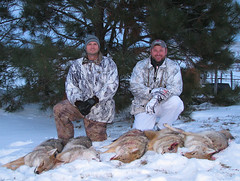 A good day of hunting!! (ronjbaer) Tags: coyote winter snow cold dogs fur hunting calling hunt yots