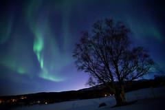IMG_6104 (Tor Even Mathisen) Tags: berg natur vår nordlys sekvens